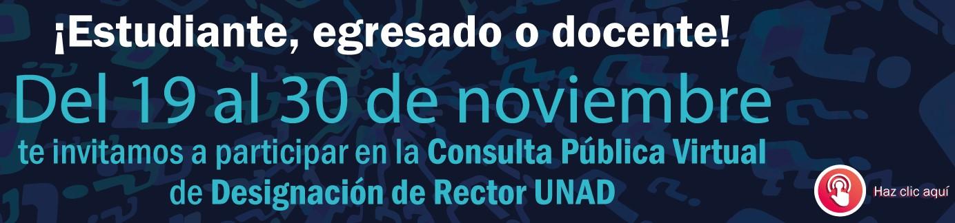 ConsultaPublica