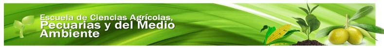 Banner superior ECAPMA